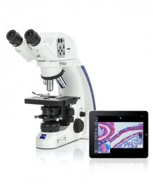 Microscopes services et maintenance Microscope Concept