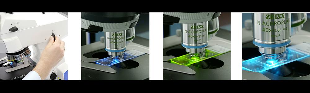 Microscope à fluorescence ZEISS AxioLab 5