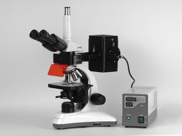 MICROS Orchid MCX300 - Microscope pour Fluorescence