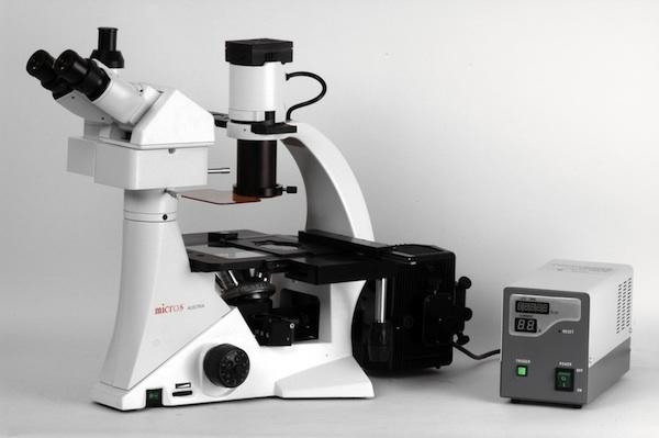 Sundew MCXI600 - Microscope Inversé à Fluorescence