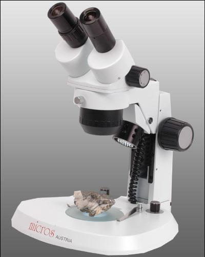 Stéréomicroscope Sortie Trinoculaire MICROS